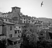 Arezzo2013_LoroCiuffenna_02